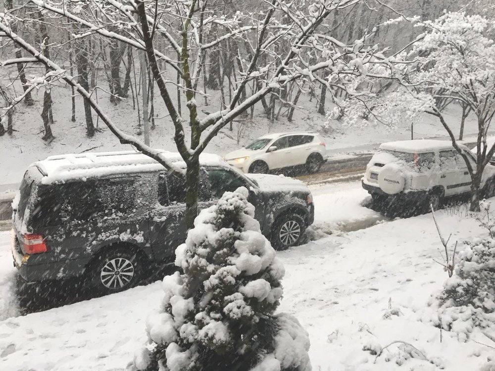 The snow in Queens (NY)