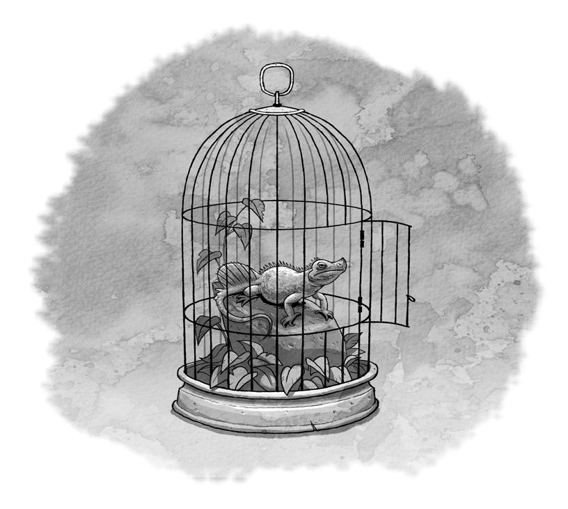LU2_06_Cage.jpg