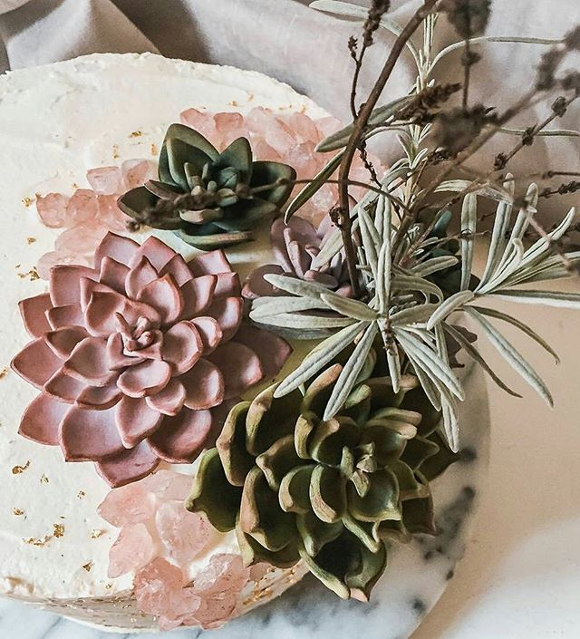 Love the soft colours of the succulents on this gorgeous cake 👌 . . @Regrann from @suessepoesie -  #succulents #nature #inspired #cake #madewithlove #cakestagram #instacake #coffee #buttercream #cherries #roastednuts - #regrann  #bohobride #bohowedding #festivalwedding #bridetobe #brisbanebrides #cakeideas
