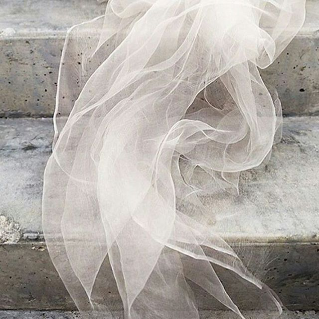 This shot just really grabs me. Love it 👌  @Regrann from @the_romancecrew -  Contradictory textures... @emilylauren.au @lines_and_squares #weddingstylist #tulle #concrete #theromancecrew #feminine - #regrann