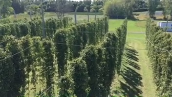 hop farm above.jpg