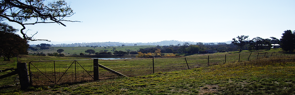 View of the Brindabella Ranges, out the back of Hall Village