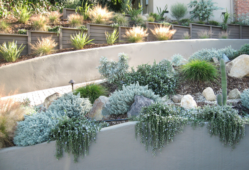 LowWaterPlanting Slopes.RetainingWalls. Ketti Kupper.jpg