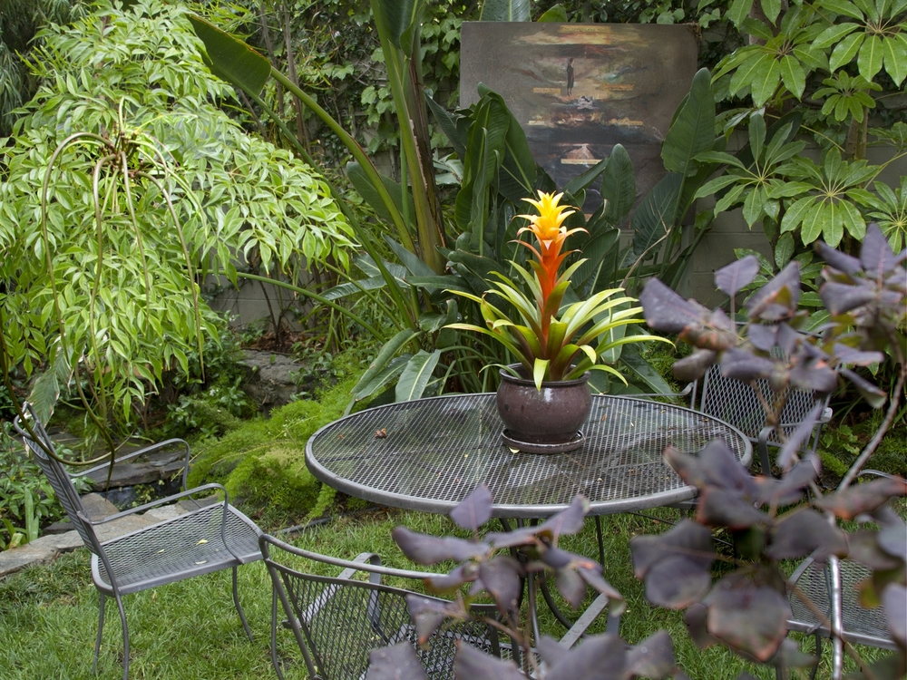 6Bromeliad Table.Ketti.Kupper.jpg