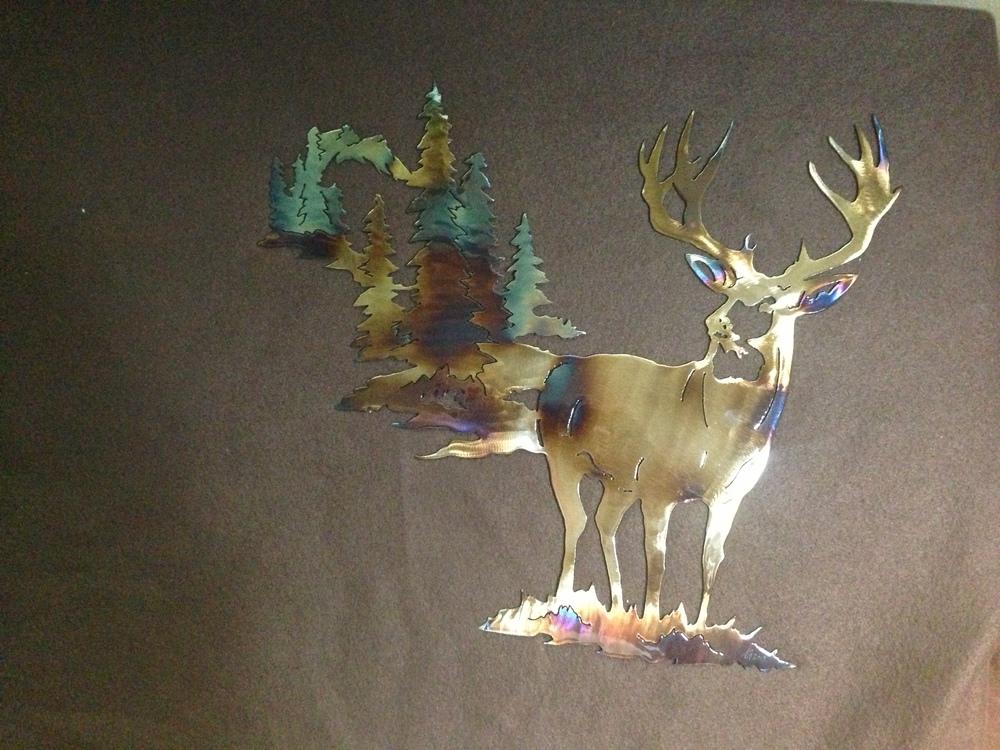 deer 25.JPG
