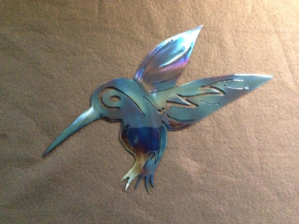 humming bird 9.JPG