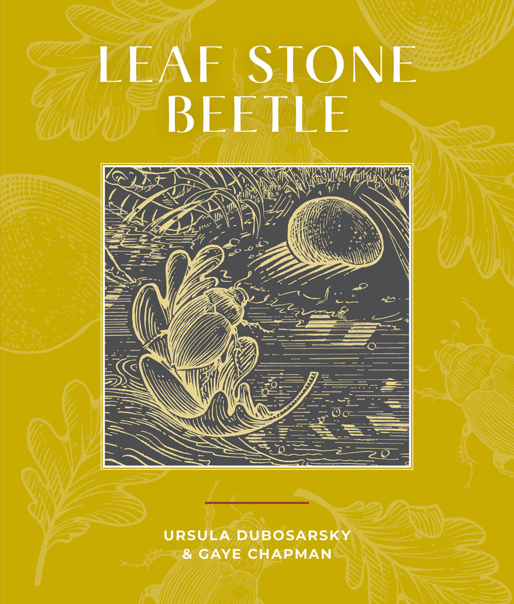 Leaf Stone Beetle - This story was inspired by a single leaf left hanging on a twig in late autumn, and from this inspiration there evolved a subtle meditation on transience, disruption and community.