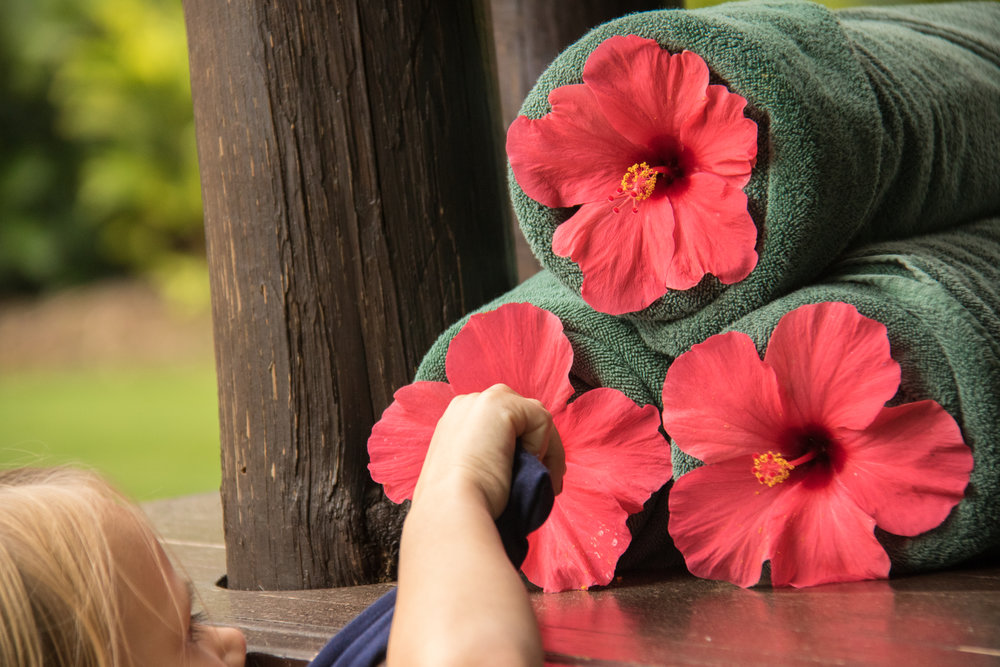 Even some flowers in between the towels