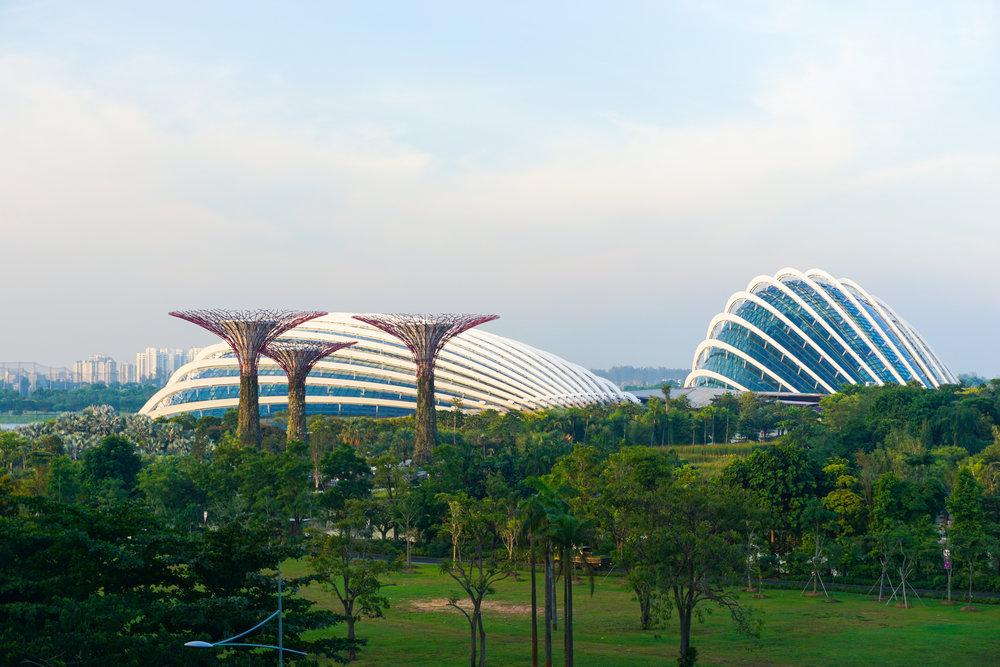 singapore-1018868 (2).JPG