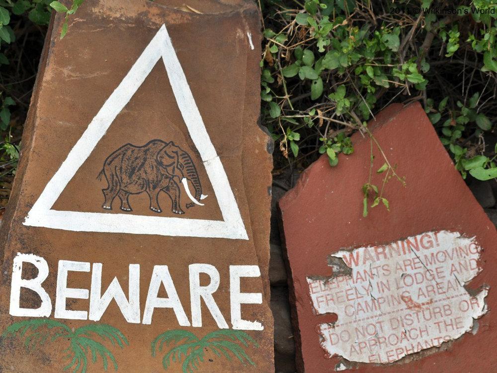 Nature all around!