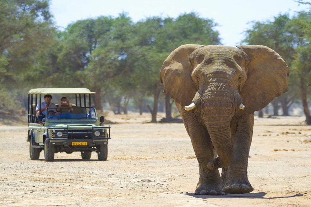 Palmwag-Sesfontein-Camping-Sites-DoroNawas_1024-497-2.JPG