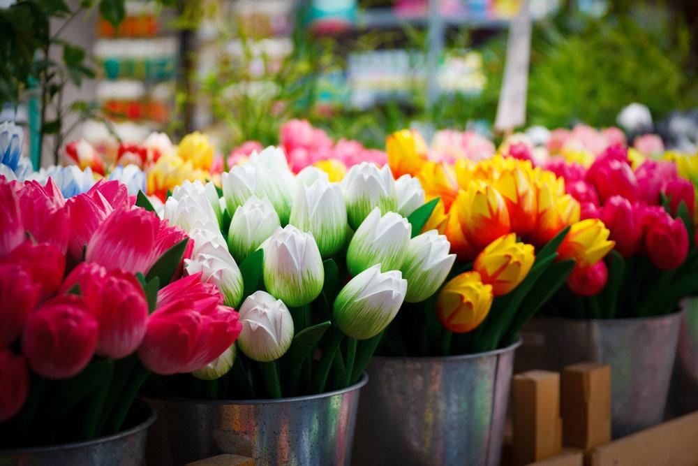 flower-69490 (2).jpg
