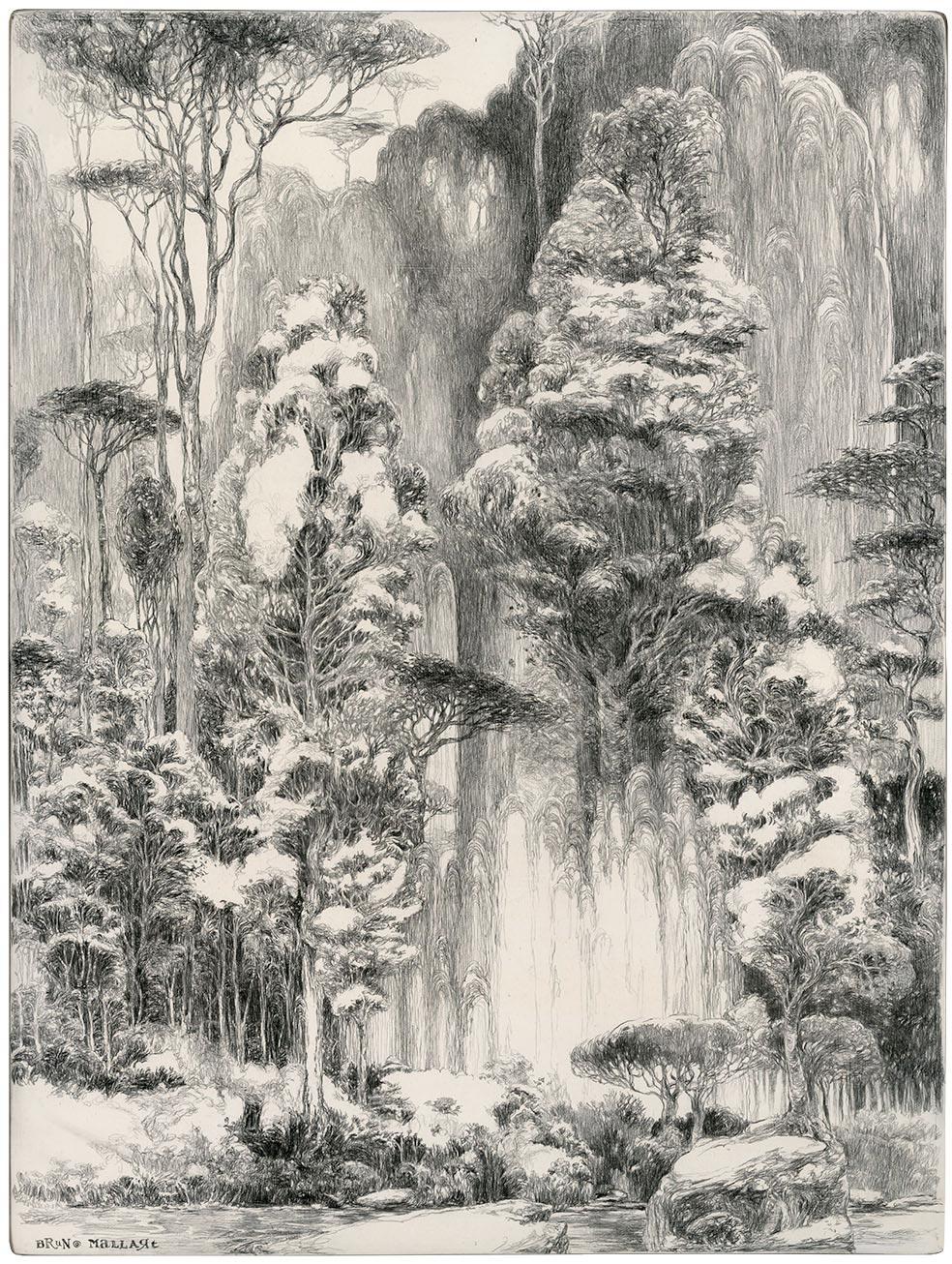 La forêt vierge au rocher