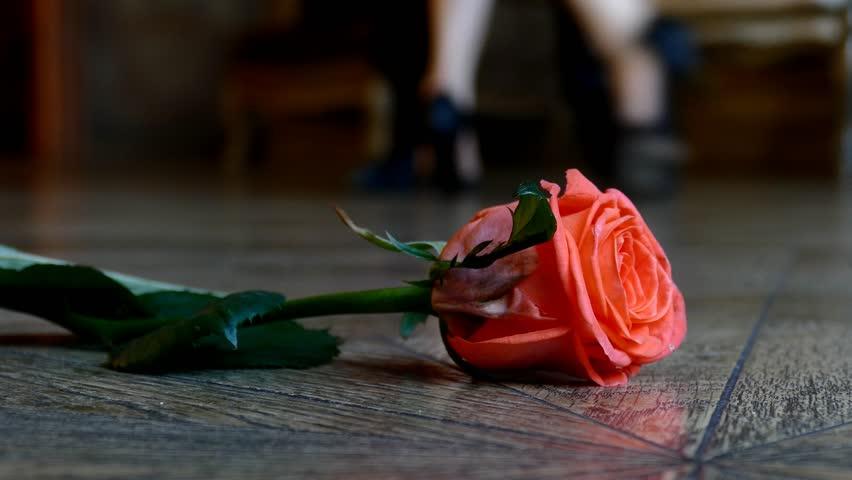 Dans på roser.jpg