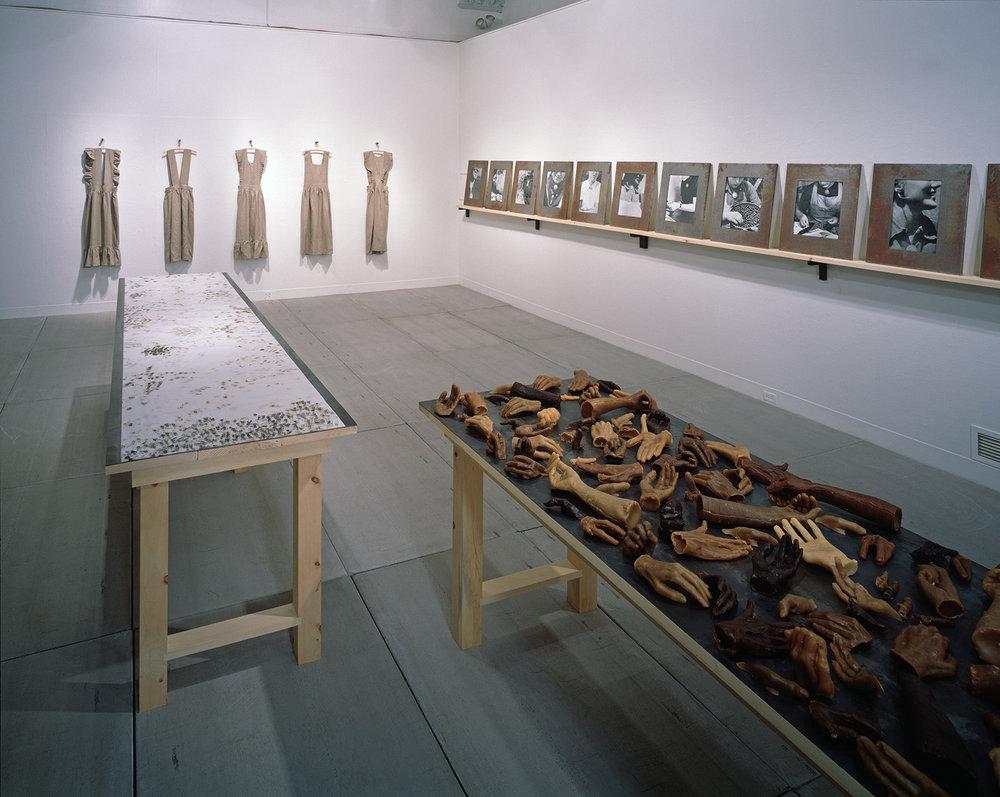 Beautiful Youth: installation view, Boston University Art Gallery 1995-1999, photo: B.T. Martin