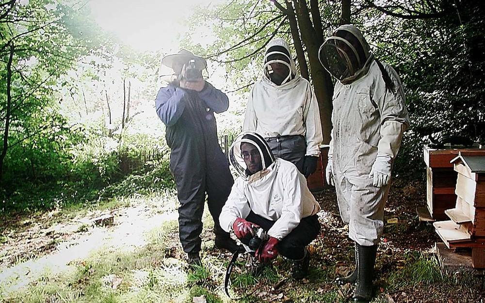 volvo-bees-5p.jpg