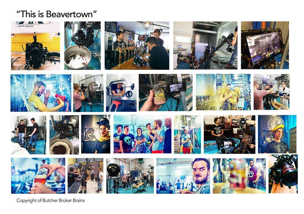 JOB+TEMPLATES-beavertown.jpg