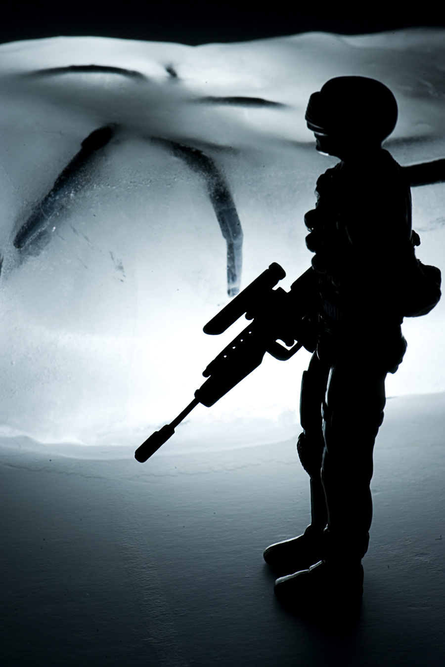 Macro ice208.jpg