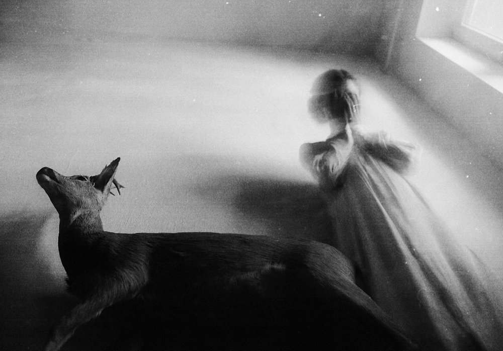 photo by  Laura Makabresku