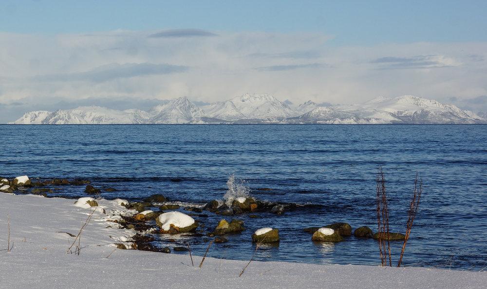 winter sea 7.jpg