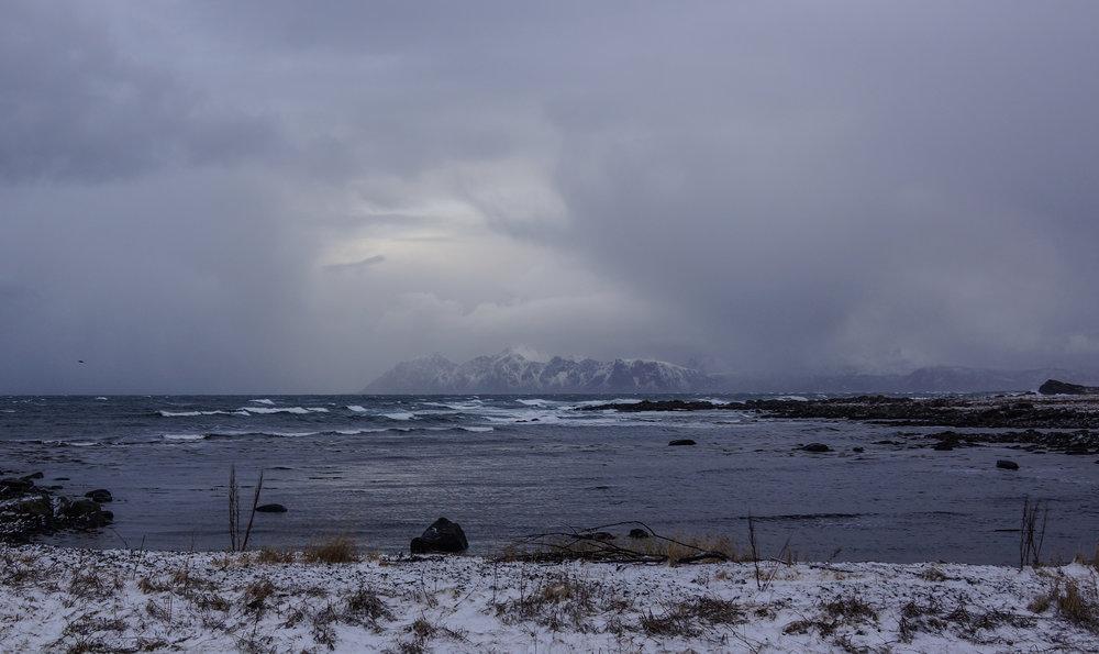 winter sea 5.jpg