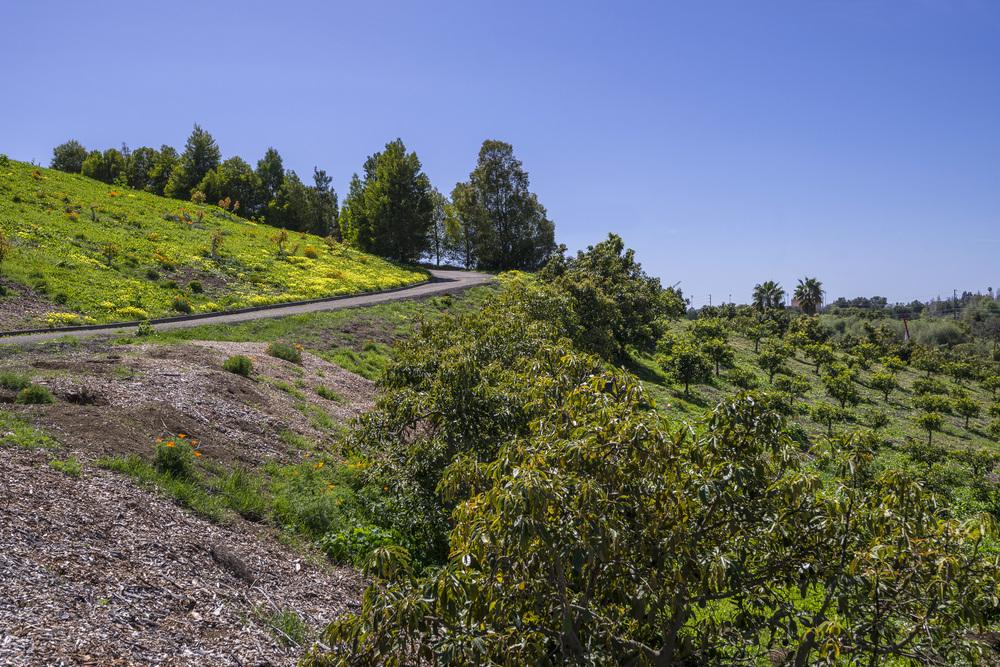 480 Glen Annie Road -