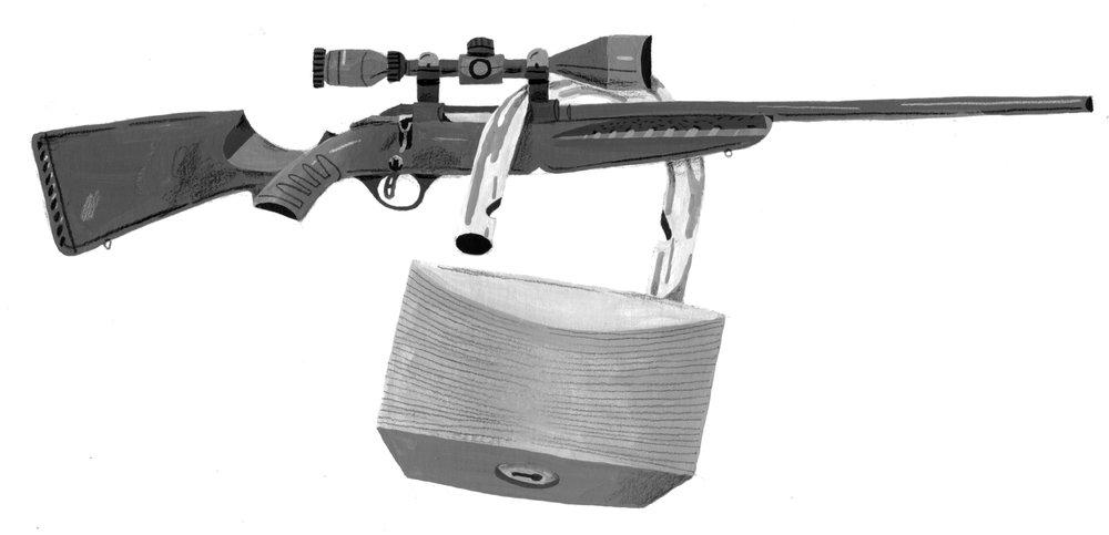 gun control final.jpg