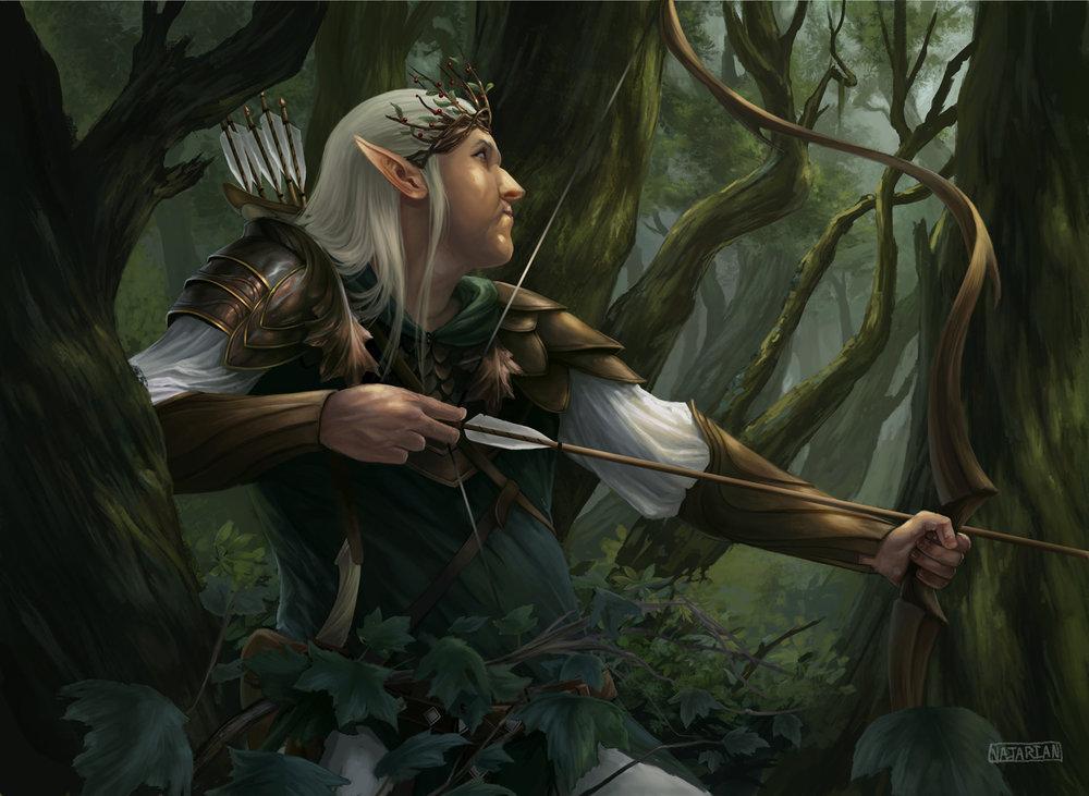 Forest Ranger_StephenNajarian