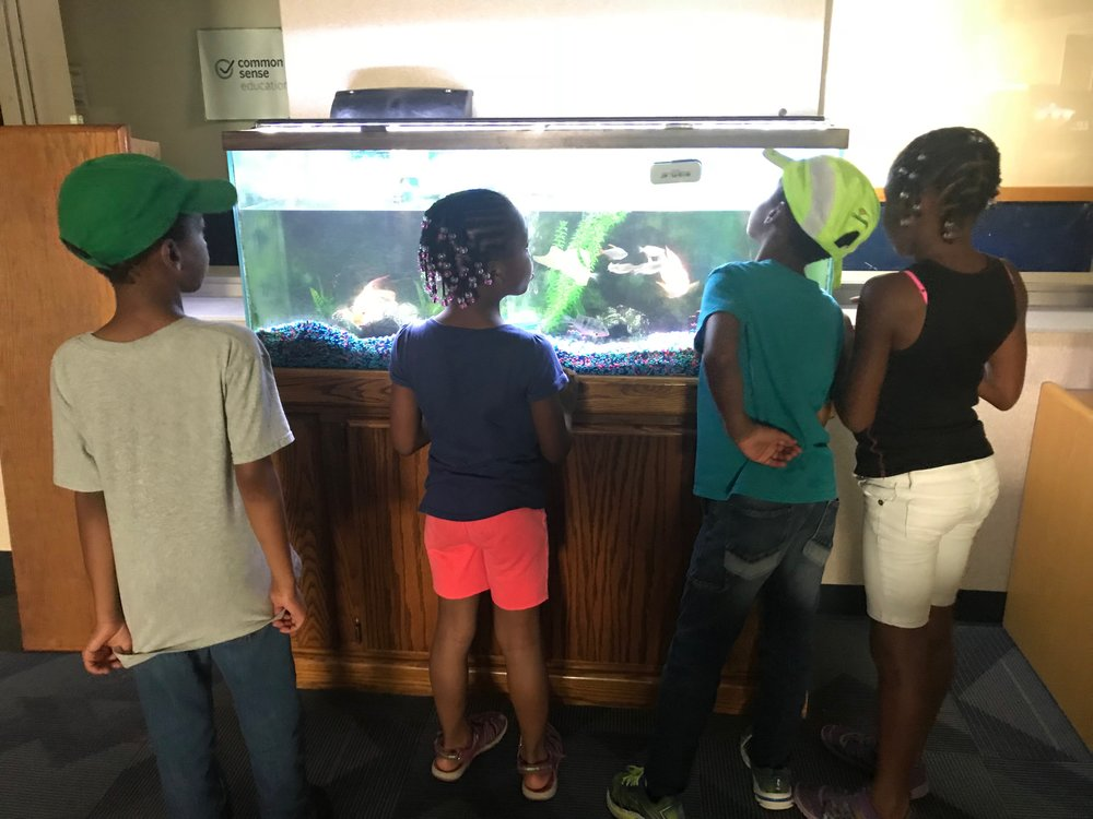 Shawnta S. Barnes' sons and nieces checking out her new space at her new job.