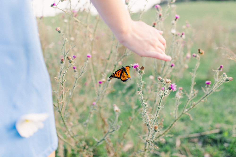 Light and airy senior portrait with butterfly