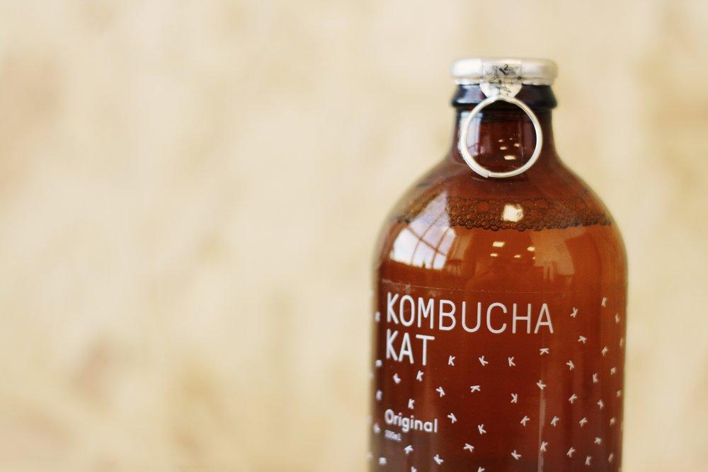 kombucha_kat