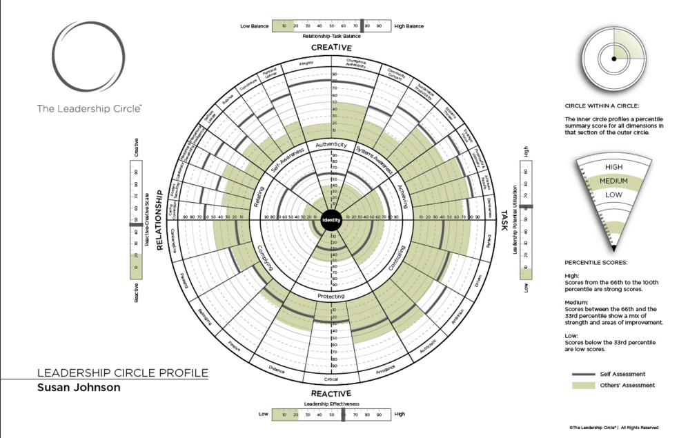 An example Leadership Circle Profile