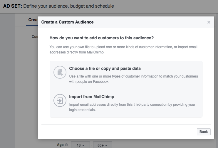 You can create a custom audience from an email list in Facebook.