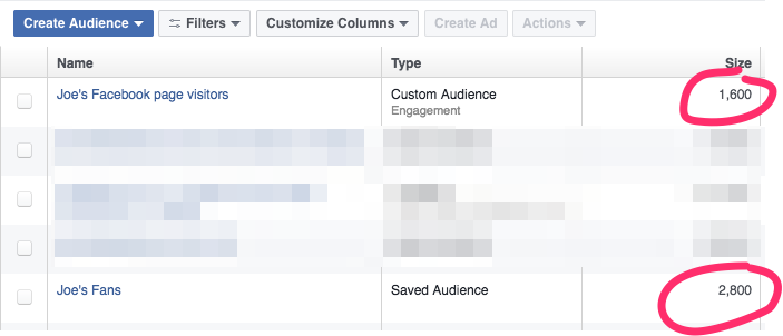 Facebook Page Engagement page visitors Custom Audience