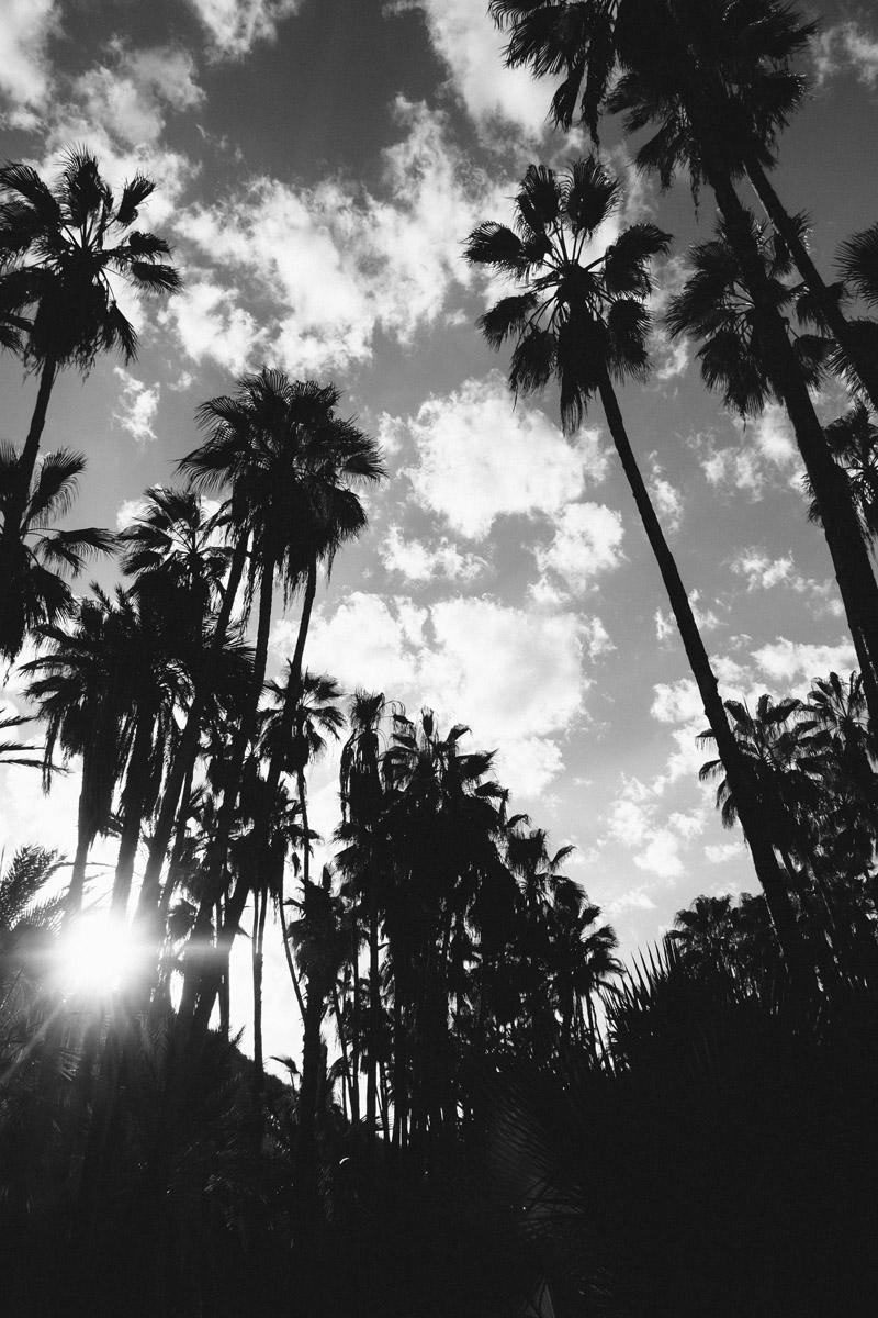 todos-santos-baja-california-325.jpg
