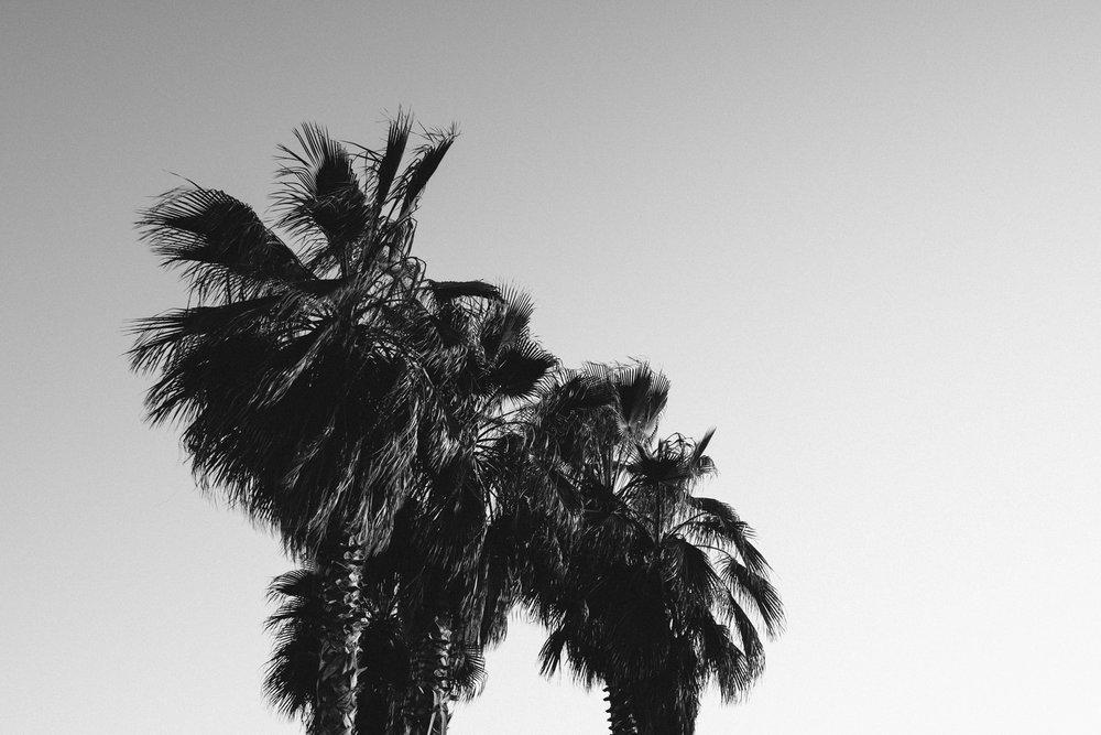 todos-santos-baja-california-348.jpg