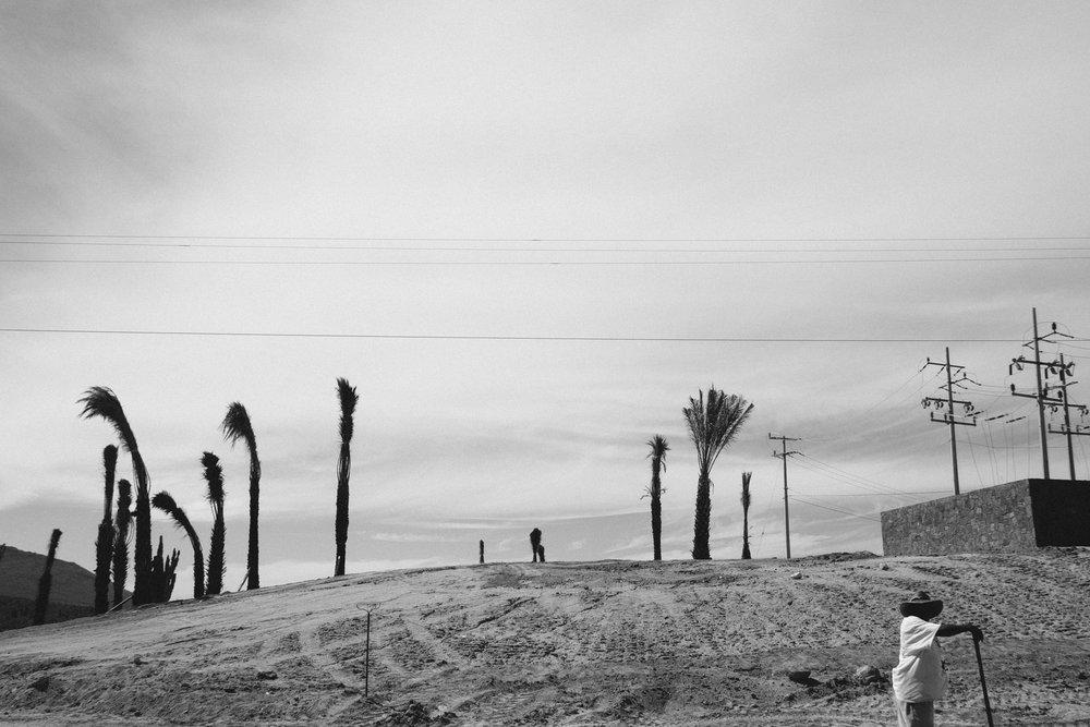 todos-santos-baja-california-397.jpg