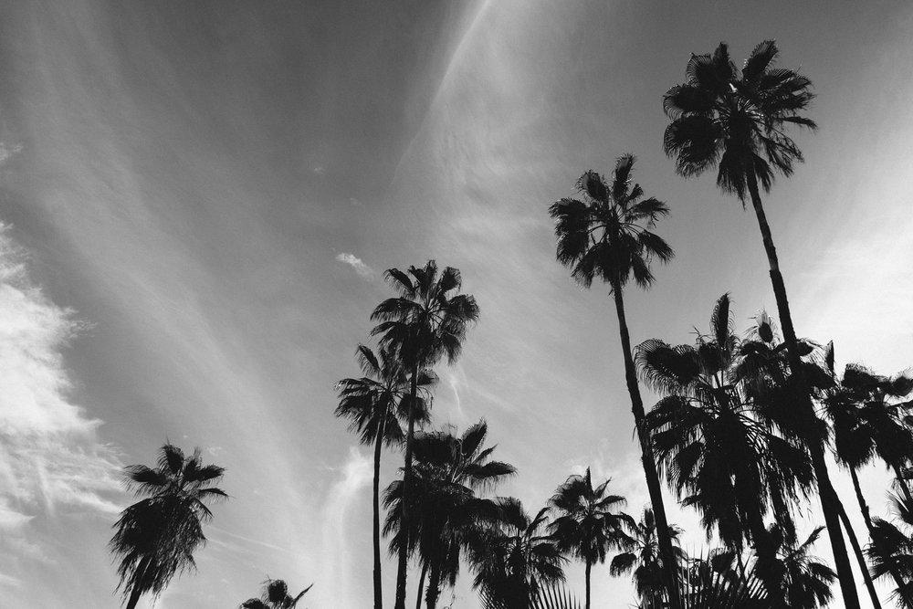 todos-santos-baja-california-433.jpg