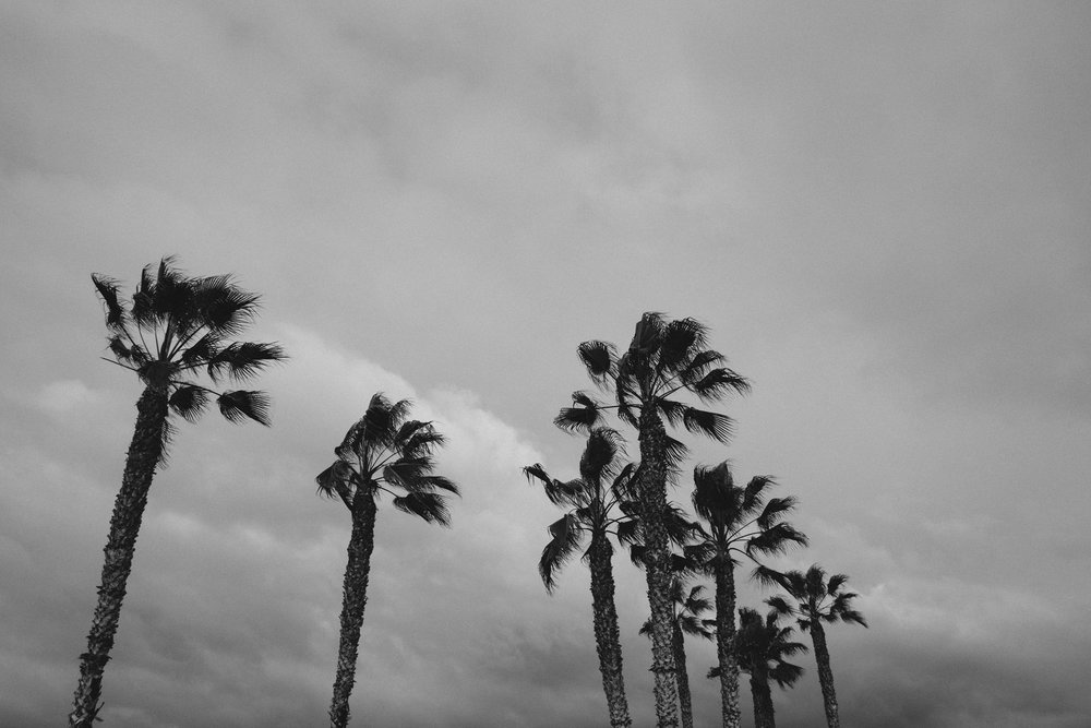 todos-santos-baja-california-65.jpg