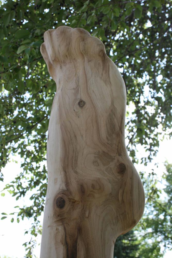Tree Commission