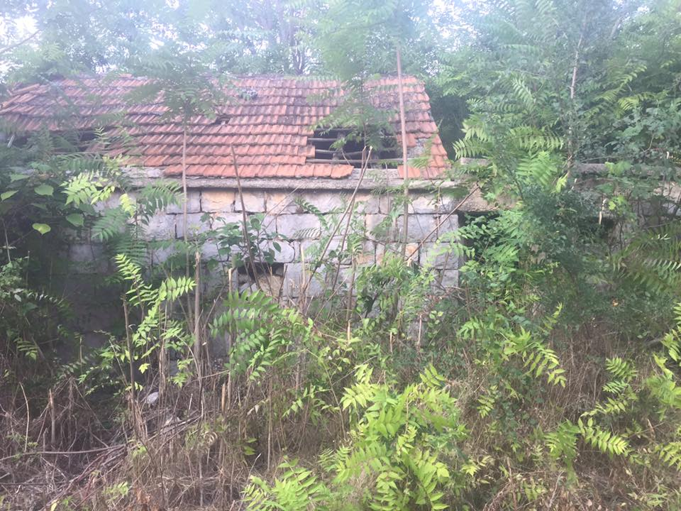 The ruins of my grandfather's old house. Oddly enough foreigners, mostly Russians are buying these rustic and half derelict old homes and turning them into Villa's and Bed & Breakfasts.