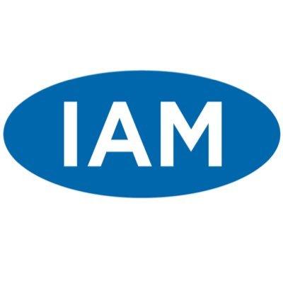 IAM Debt Group