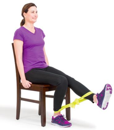 Knee Strengthener - move 1