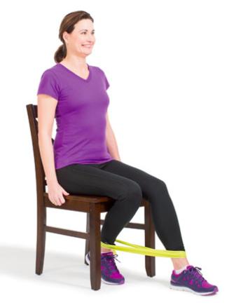 Knee Strengthener- move 2