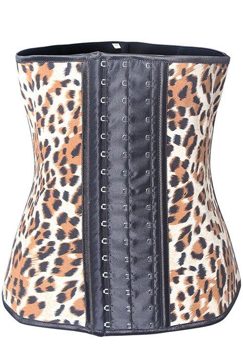 Shaperz Cheetah Web2.jpg