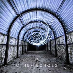Other Echoes - Run & Hide
