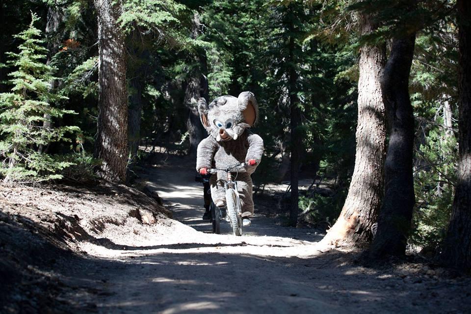 afc6b08a4a5 Mammoth Bike Park: Opening Day — Blogging Bishop