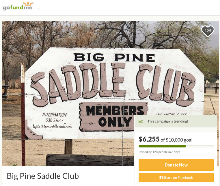 bigpinesaddleclub.jpg