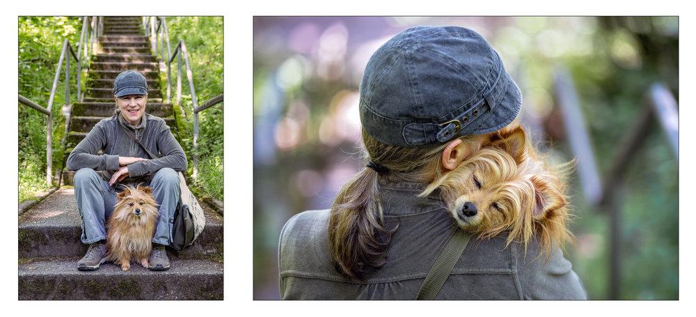 Pomeranian_Seattle Pet Photography