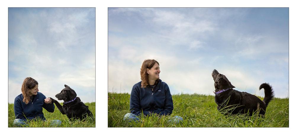 labrador_Seattle Pet Photography